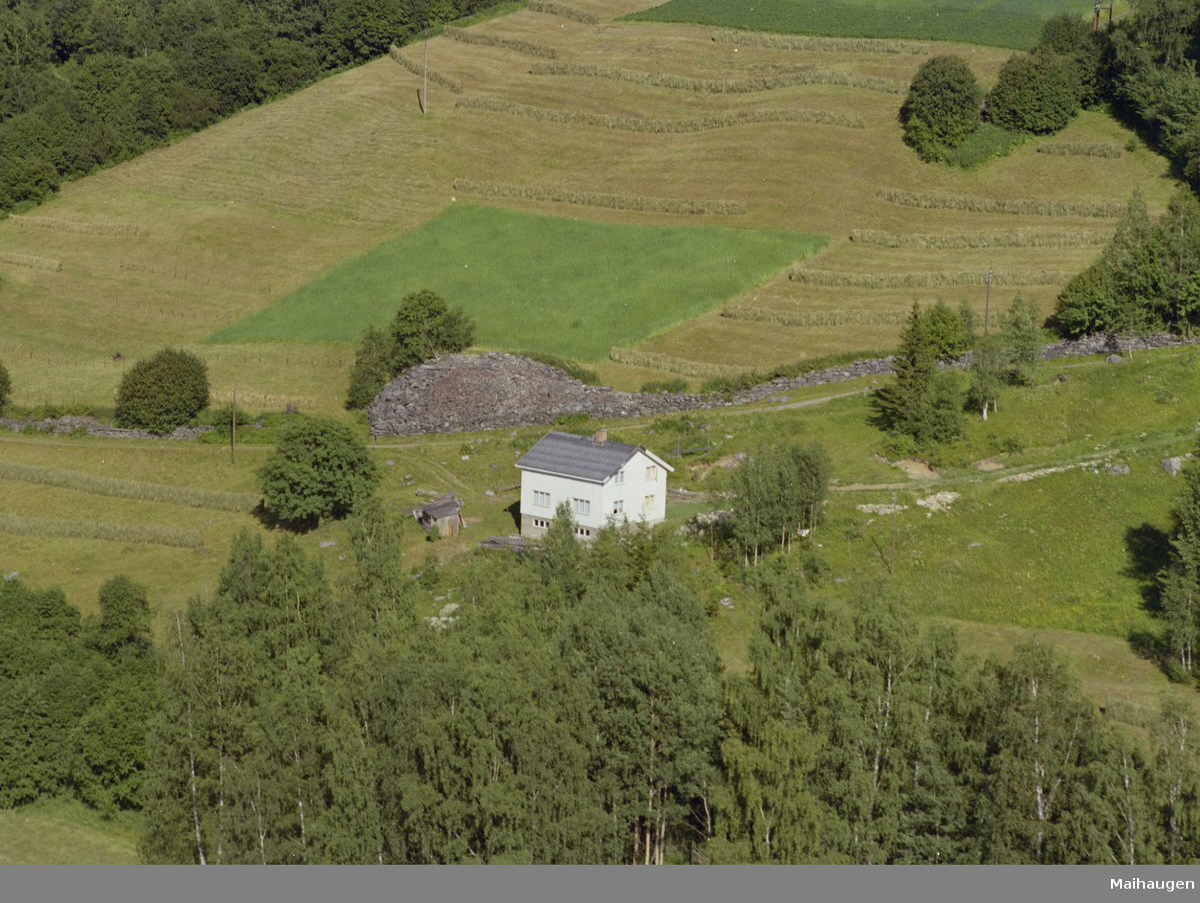 Øyer, Tretten østside. Hvitt en og enhalvetasjes hus med uthus. Gårdsveg ovenfor og dyrket mark. Løvtrær rundt.