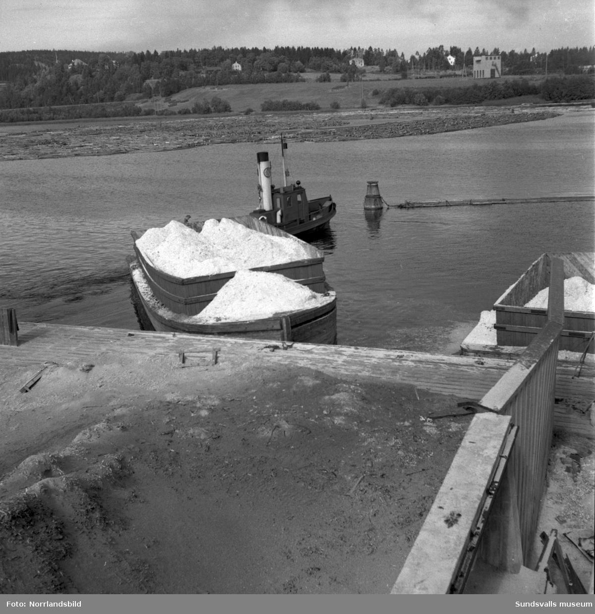 Bogserbåtar och pråmar vid Skönviks sågverk.