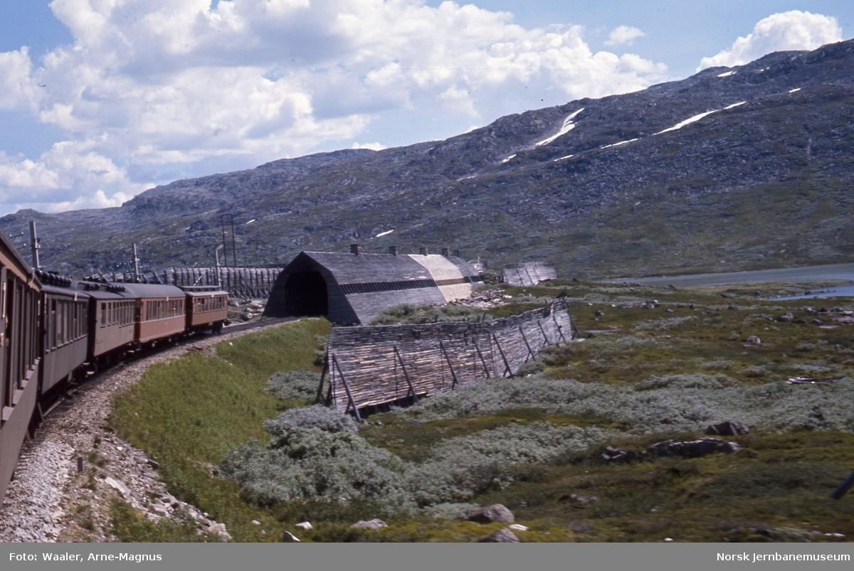 Foto bakover fra Ao-vognen i sommertog 609 Oslo-Bergen