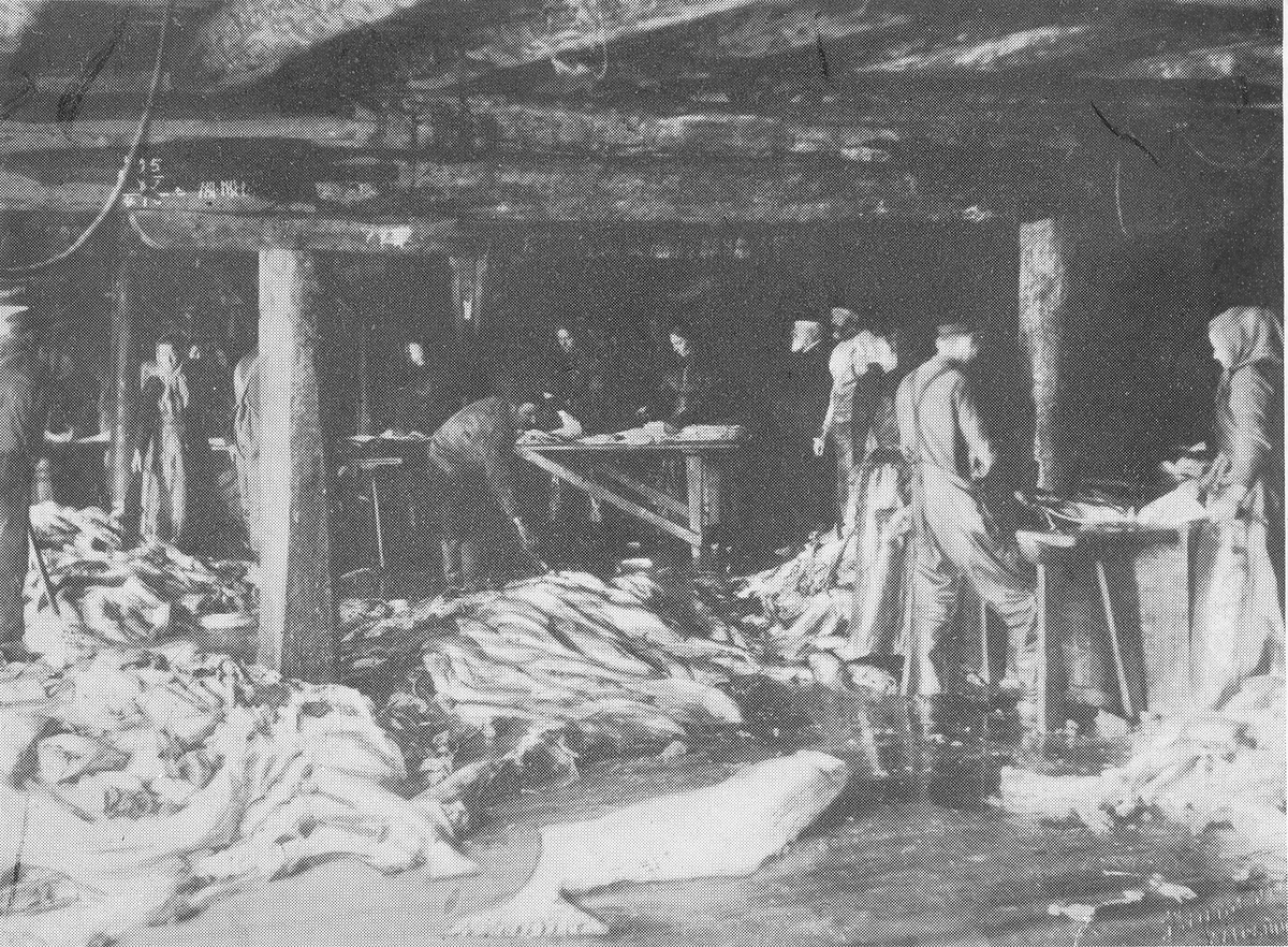 P.T.Sandbegs pakkehus under bankfisket