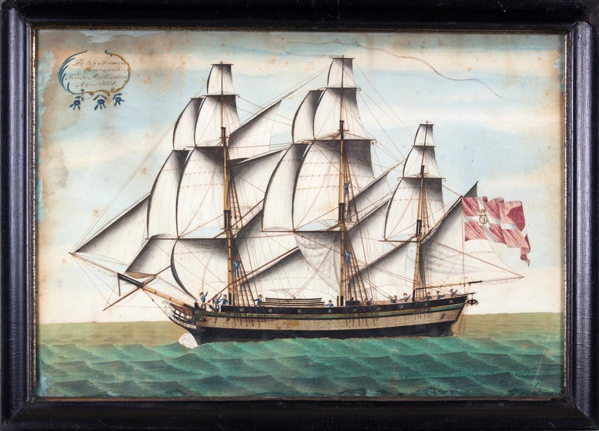 Skipsportrett av fullrigger DE TOLV SØDSKENDE for full seilføring. Dannebrog med det kongelige navneschiffer C7 tyder på at skipet går i fart på Middelhavet. 14 mann på dekk.
