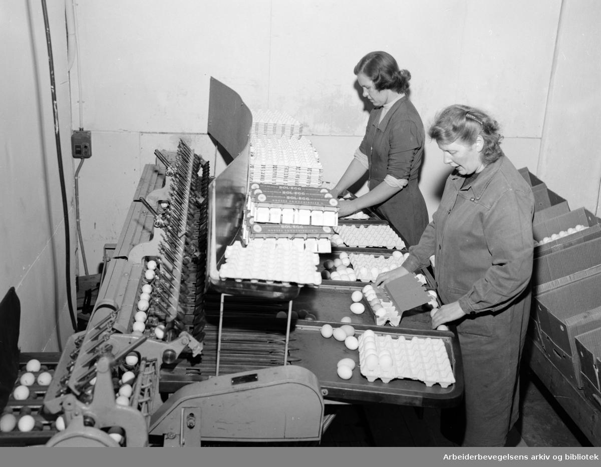 Telegrafen. Telex-avdelingen. Fjernskriver for to-veis trafikk. Oktober 1953