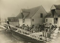 Hasseløy sett mot sydvest ca.1890
