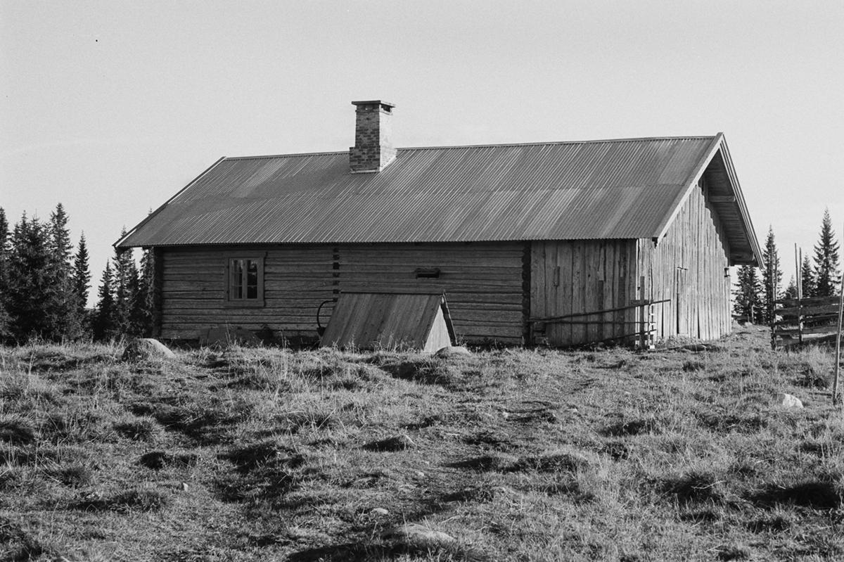 Døråsen, Buttekvern, Philske sameie, , seterbruk på Hedmarken,