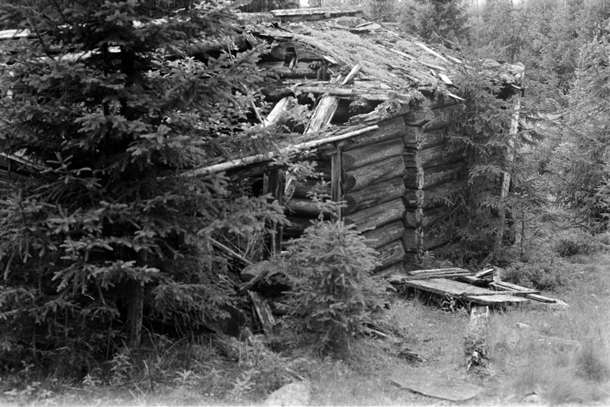 Veslesetra, Mæhlum, størhus, forfall, Romedal allmenning, seterbruk på Hedmarken,