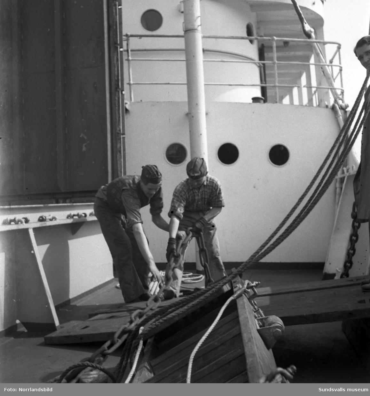 Skolfartyget Albatross i Sundsvalls hamn. Exteriörbilder och bilder från verksamheten ombord.