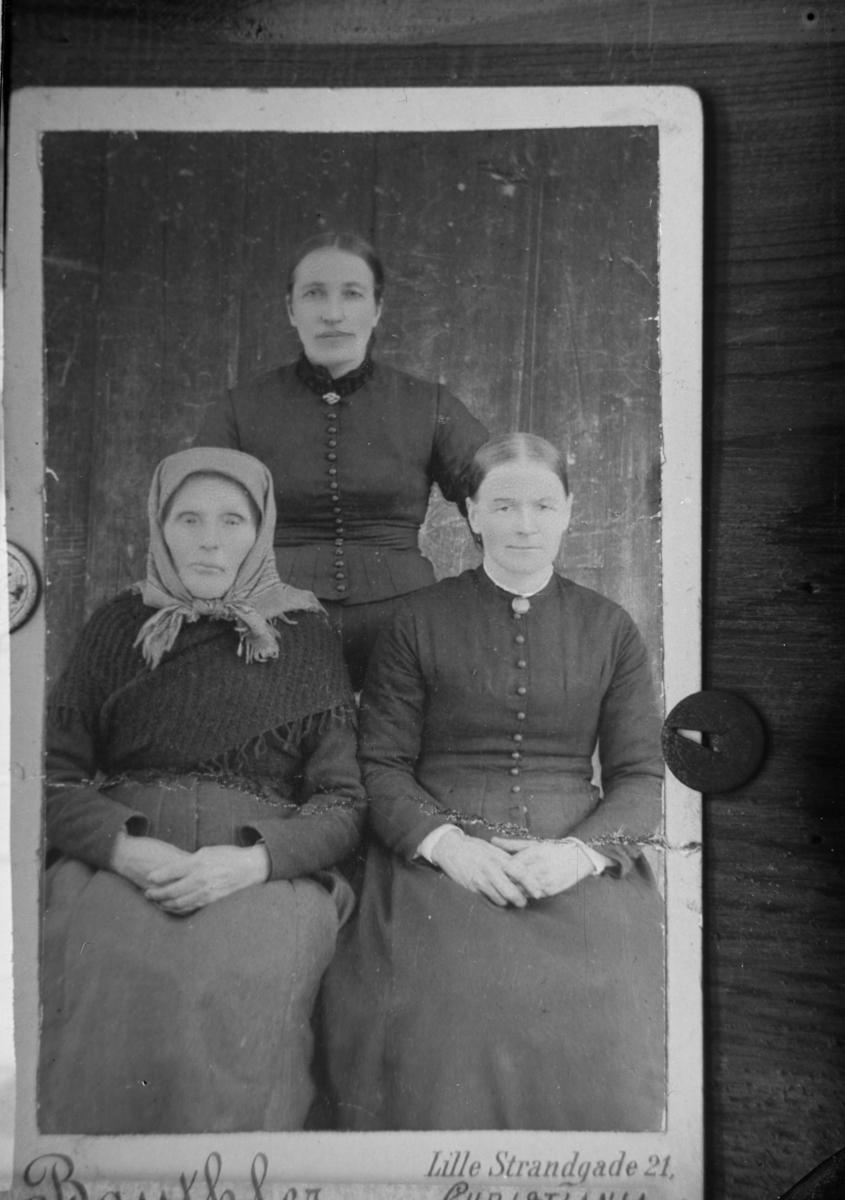 Avbildet fotografi, opprinnelig av fotograf Karl Edvin Bauthler, portrett av tre kvinner. Anna Kolloen