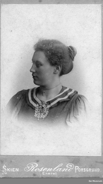 Portrett av meierske Marie Vie, Flå i Hallangdal