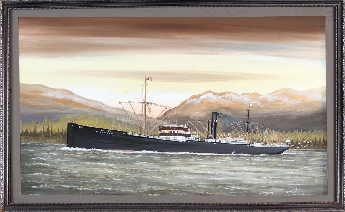 Skipsportrett av DS TILTHORN under fart med landskap i bakgrunnen.