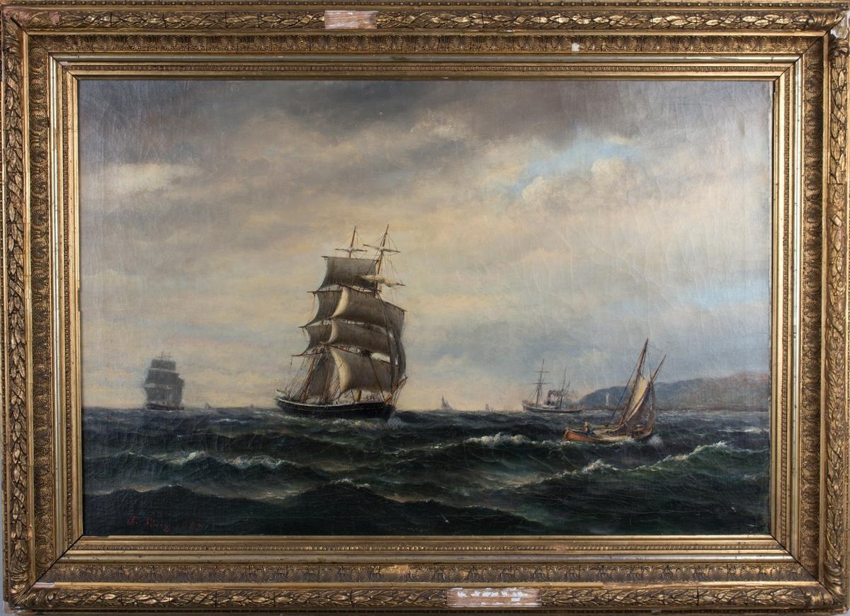 Flerskipsmaleri av en bark med full seilføring, ett dampskip og en seilskøyte under fart med land i bakgrunn. Ser flere andre seilskip i horrisonten.
