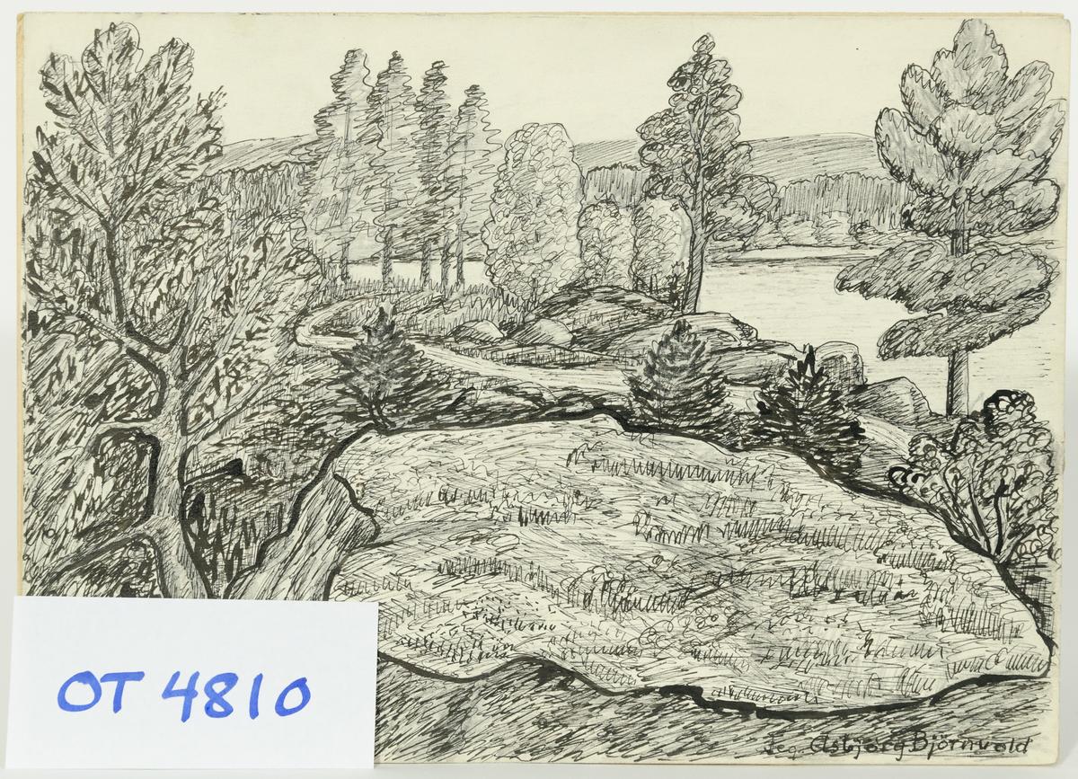 """påført 1963. """"Vakker bu"""" (på baksida).  Tegning på papir."""