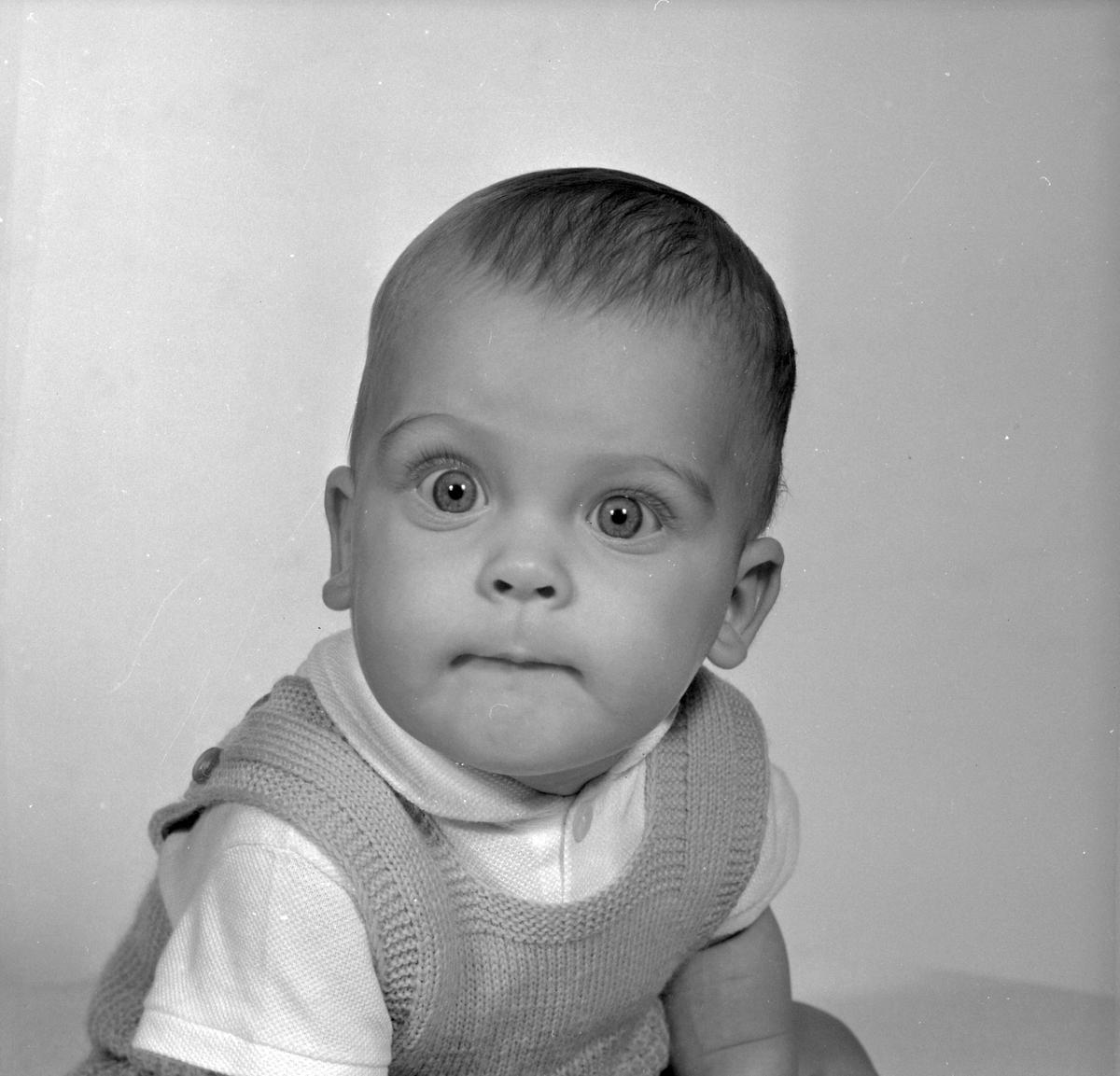 Göran Möllebo, 8 månader. Ruddammsgatan 14, Gävle. Den 5 december 1966