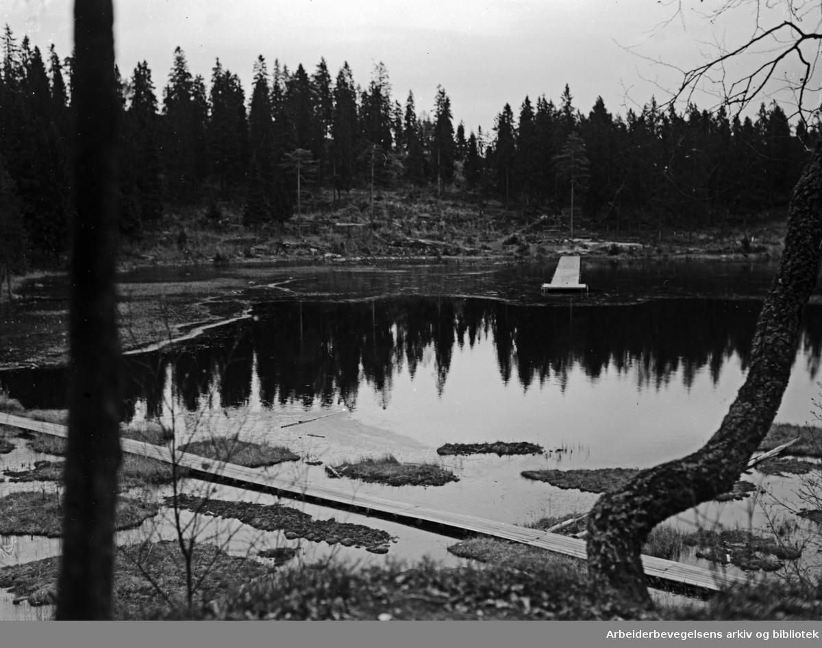 Nordmarka: Trollvann i Lillomarka . Oktober 1952