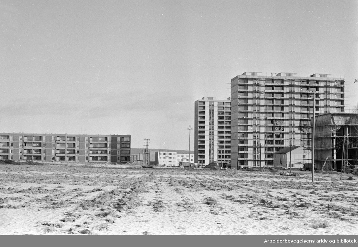Linderudsletta. Januar 1964