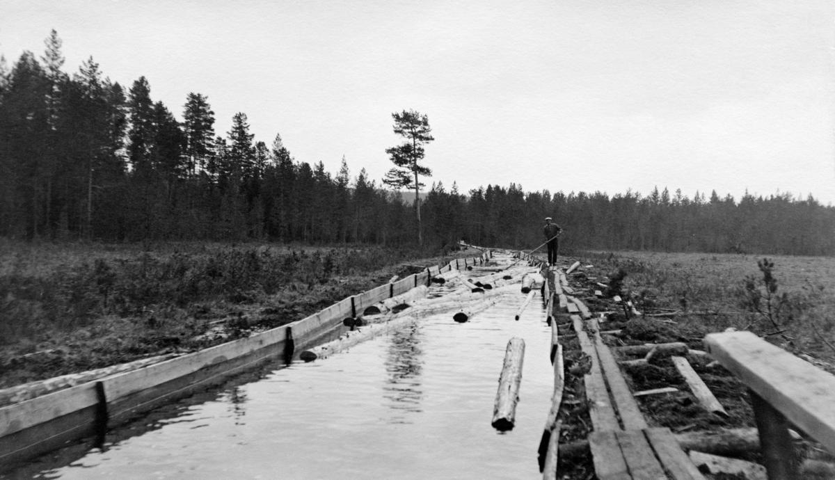 Den såkalte «Måsåmyrkummen» i Stensåsrenna i grensetraktene mellom Løten og Elverum kommuner.  Stensåsrenna ble bygd på initiativ fra Thorvald Mejdell, som var forstmester i firmaet And. H. Kiær & Co. i 1889-1890.  Dette selskapet hadde om lag 50 000 dekar med skog i et område som lå vanskelig til i den forstand at det var komplisert å få tømmeret fram til fløtingsvassdrag, enten en valgte å transportere det vestover mot Rokosjøen og Svartelva eller østover mot Norderåa og Glomma.  Mejdells idé var å bygge ei trerenne om lag fem kilometer østover til Attholdsdammen i Norderåa, som var fløtbar de neste fem kilometrene fram mot Glomma.  Driften av trerenna var ikke ukomplisert.  Enkelte steder var hellingsgraden og strømhastigheten så stor at tømmeret kunne bli kastet ut av renna, og spesielt tidlig i fløtingssesongen var lekkasjene så store at det ikke ble nok vann igjen til å bære tømmeret fram.  Det forekom relativt ofte at tømmeret satte seg fast, og da måtte driften stanses inntil renneløpet var åpent igjen.  Før anlegget fikk felttelefoner i slutten av 1920-åra ble stoppsignaler gitt fra flaggposter langs renna.  De driftsproblemene man hadde ble gradvis forsøkt utbedret, blant annet ved at man gravde cirka to meter brede kanaler over flere av myrene renna passerte.  På Måsåmyra, hvor dette fotografiet er tatt, var kanalen - eller «kummen» som fløterne kalte den - var om lag 150 meter lang.  Disse stillleflytende bassengene skulle gjøre rennefløtinga mer fleksibel.  Kummene ble magasiner for tømmer som skulle videre, og som kunne slås på nedenforliggende renneløp i et tempo som var avpasset etter risikoen for at stokkene skulle sette seg fast.  Myrarealene inntil kummene var dessuten utmerkete depoter - velteplasser - for tømmer fra drifter i skogene omkring renneanlegget.  Her var det ypperlige forhold for tillegging og merking, og man slapp å løfte stokkene høyt for å få dem opp i renna.  Da dette fotografiet ble tatt arbeidet en mann med fløterhake fra en av 