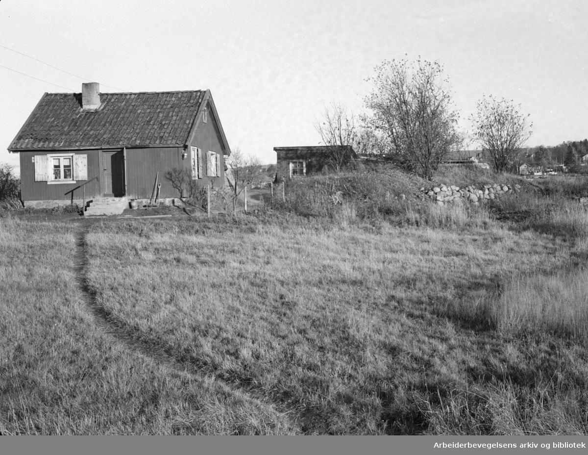 Ekeberg. Dette lille røde huset på Ekebergsletta holdt stand også da det lå like innpå tyskernes luftskytsanlegg. November 1947.