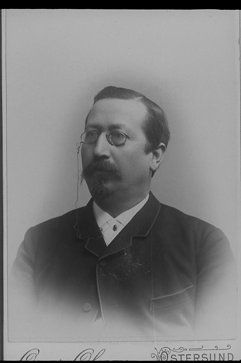 Häradshövding Albert Birger Malmström