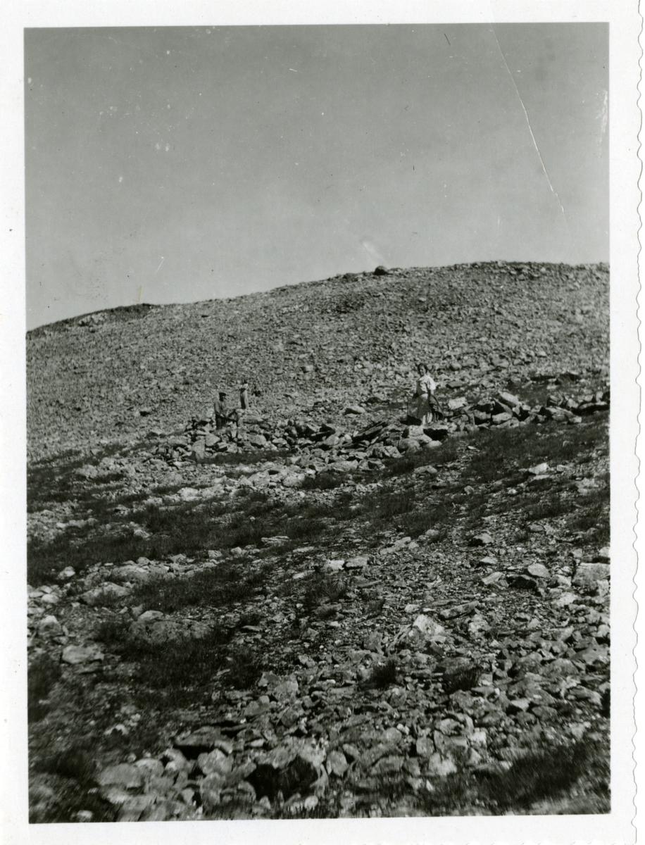 To menn og to kvinner avbildet midt i en steinur. Ut fra steinmuren stikker det ut to reinsgraver.