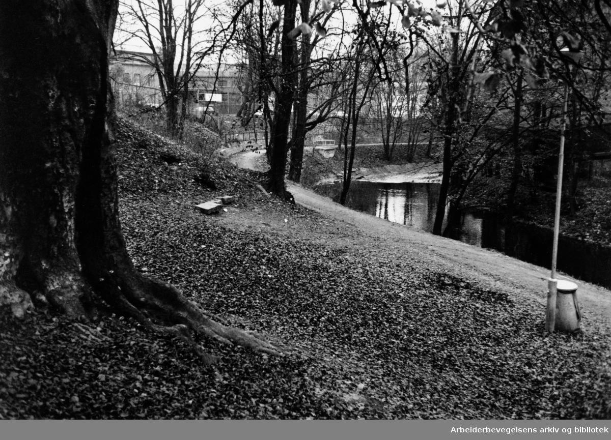 "Akerselva ved ""Eika"". 4. november 1993"