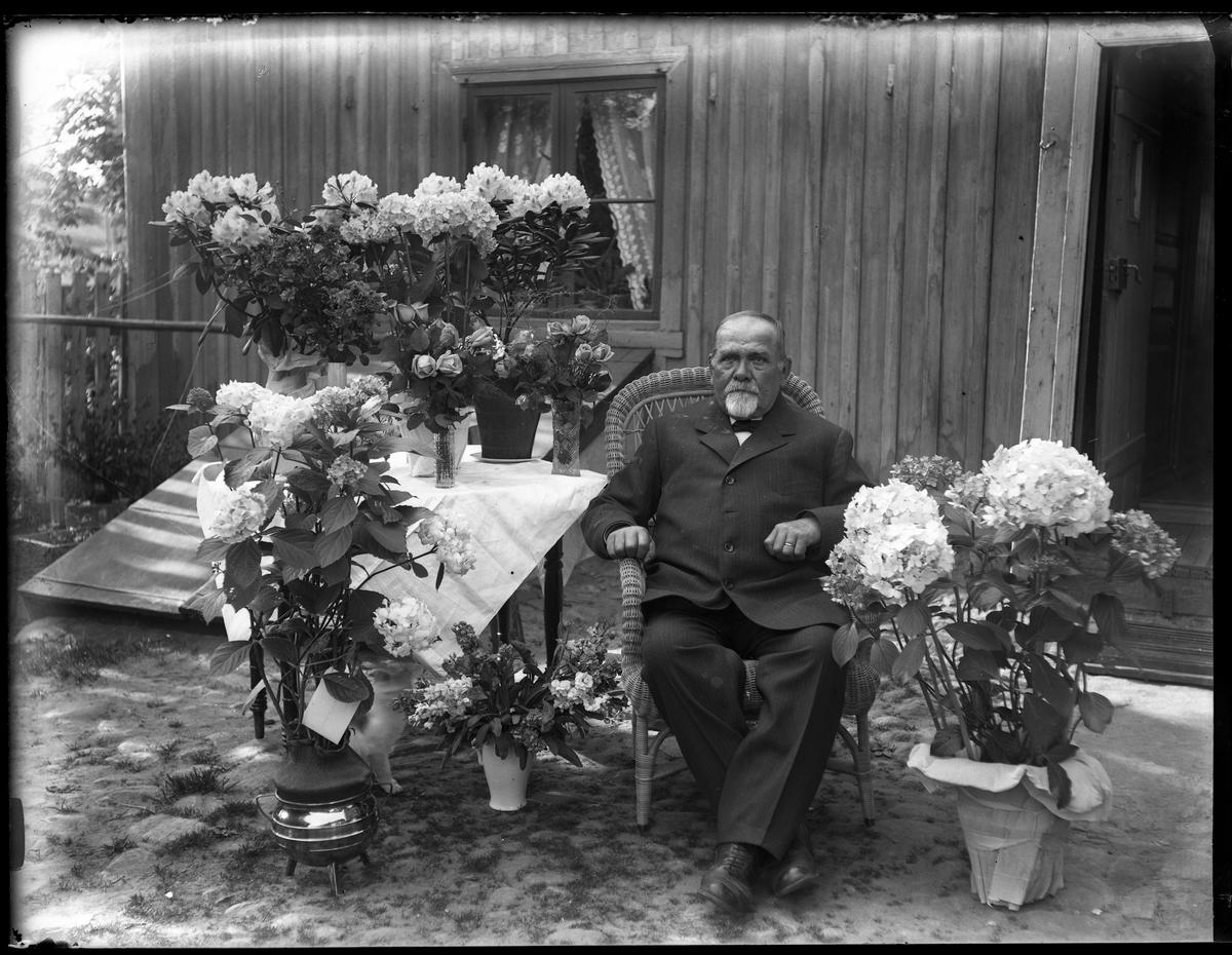 Janne Thorsell sitter ute i trädgården i en korgstol, omgiven av blommor på sin 70årsdag.