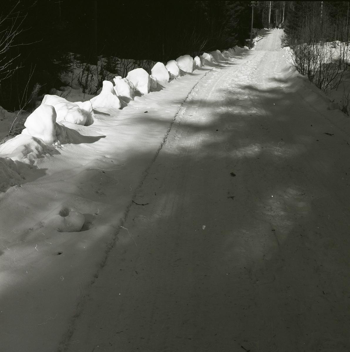 Snötäckt skogsväg med en stor snökant på sidan, 1961.