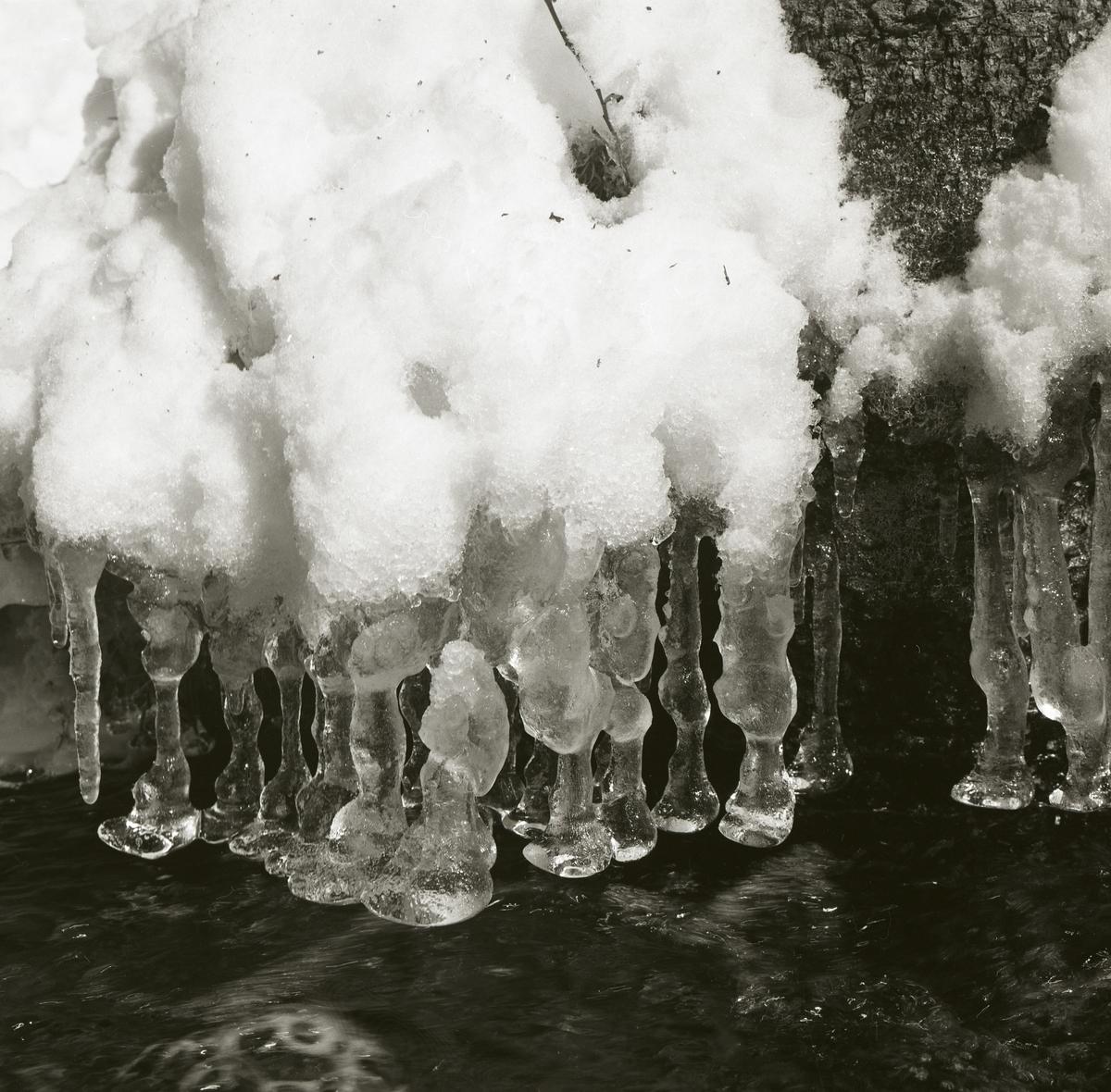 Istappar med bulkig botten vid Svarttjärnsbäcken, april 1967.