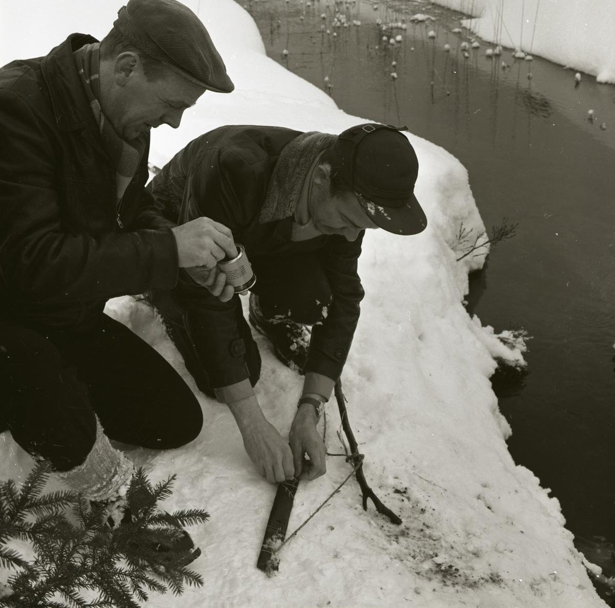 Två män sitter på huk intill ett vattendrag, 1962.