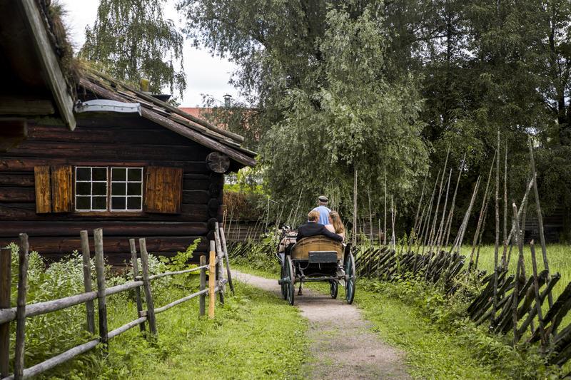 Tidenes bryllup reise med hest og vogn