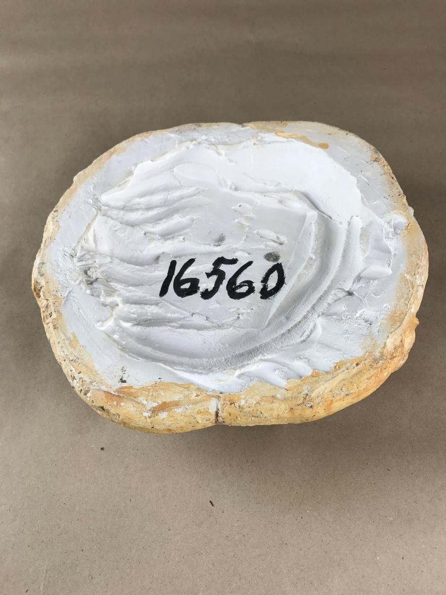 Gipsmodell av brödkaka i naturlig storlek.