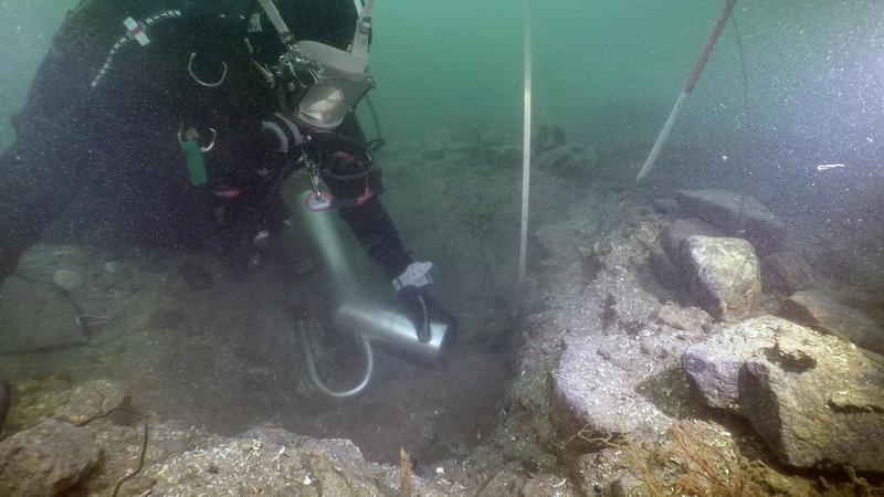 Dykker graver i sjøbunn med vannejektor. Vannejektoren i bildet ser ut som røret på en støvsuger som suger inn sedimenter fra sjøbunnen. I bakgrunnen ses stikkstenger og målebånd stikkende opp av hullet som graves.