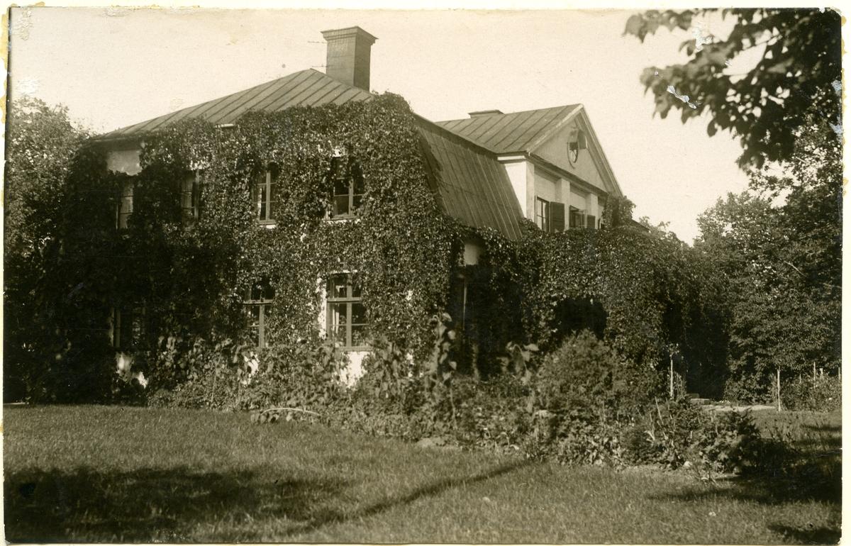 Kolbäck sn, Strömsholm. Thottska villan, chefsbostaden. Huset överväxt av vildvin eller annan växt. Thottska Villan har sedan uppförandet 1770 varit bostad för de chefer som genom tiderna ansvarat för kungliga stuteriet, senare hingstdepån och även statliga ridskolan.
