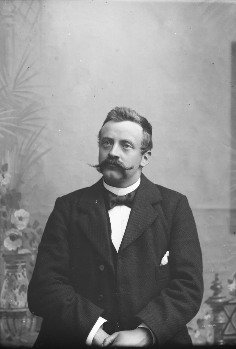 Portrett, brystbilde, Ole Ødegaarden