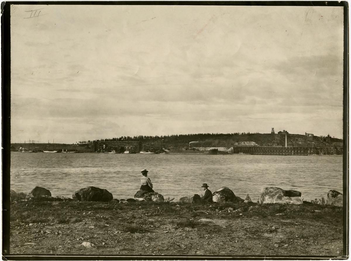 Utsikt mot Svartön.