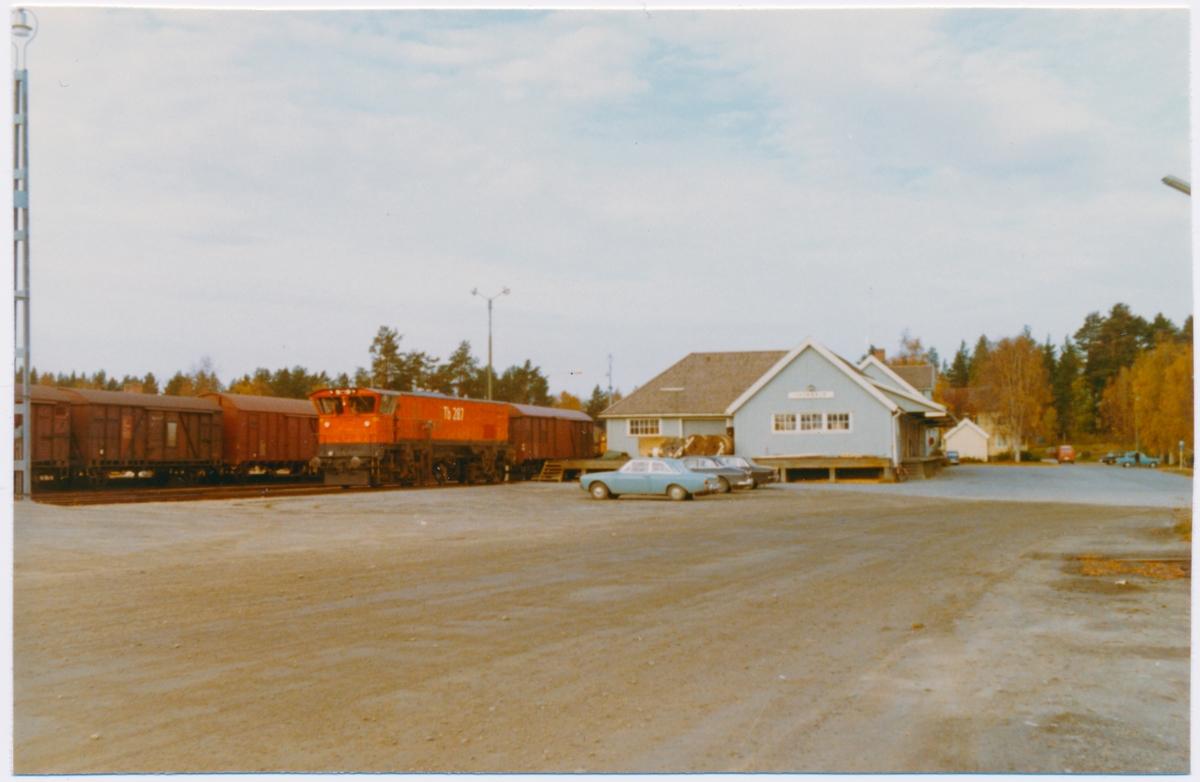 Statens Järnvägar, SJ Tb 287. Stationen byggdes 1924. Förrådet byggdes 1962