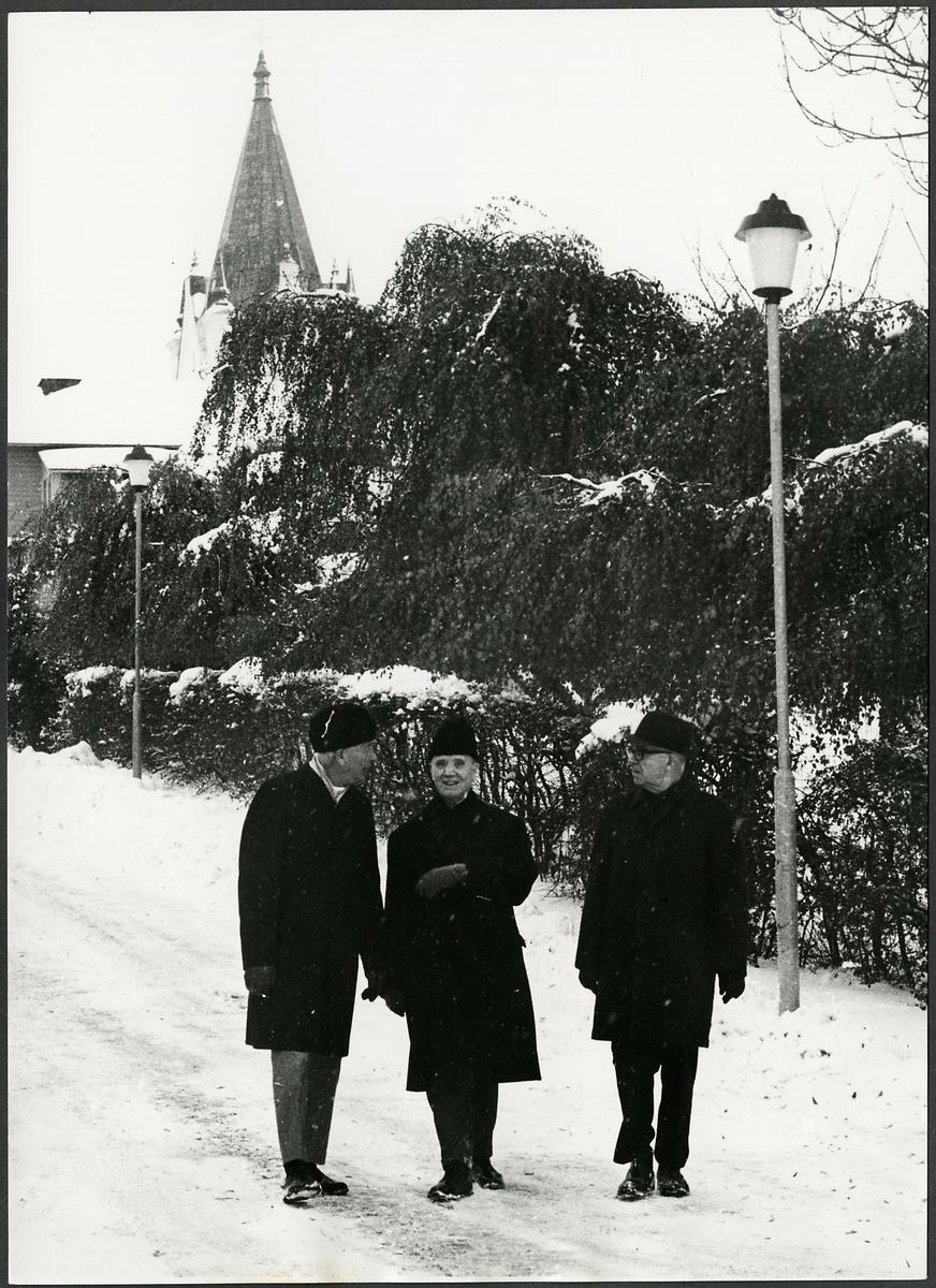 Stinsar på promenad vintertid.