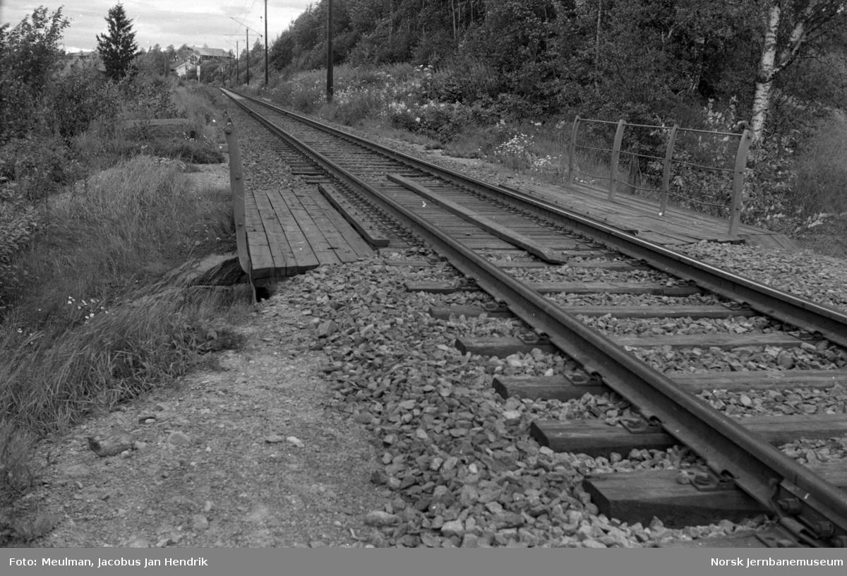 Fra en befaring mellom Haga og Årnes på Kongsvingerbanen i forbindelse med planlegging av helsveising av sporet. Her ved km 49,15.
