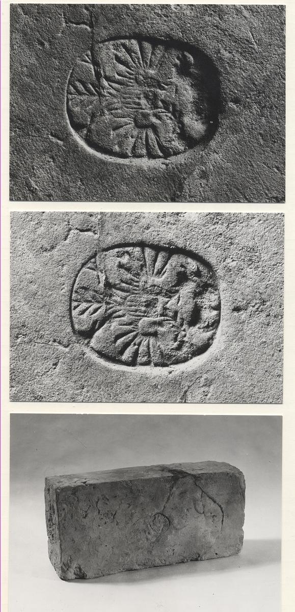 Tegelsten från Borstövraket (1740-talet) i Finlands Åländska skärgården. Stenen härrör från fartygets kabyss.