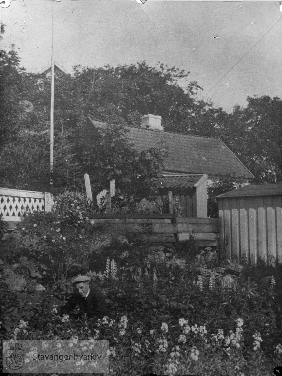 Hus i bakgrunnen. Avfotografert positiv fra tidlig 1900-tall.