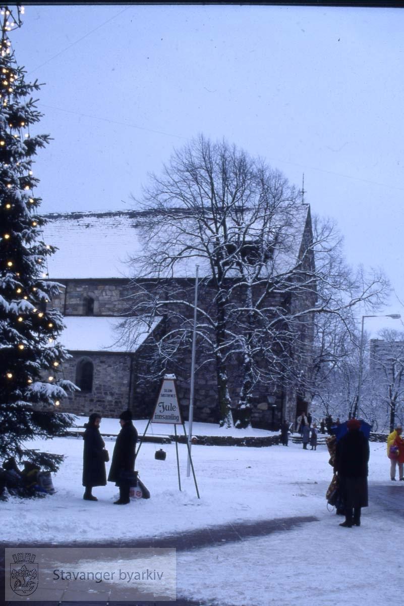 Domkirken i vinterdrakt. .Juletre