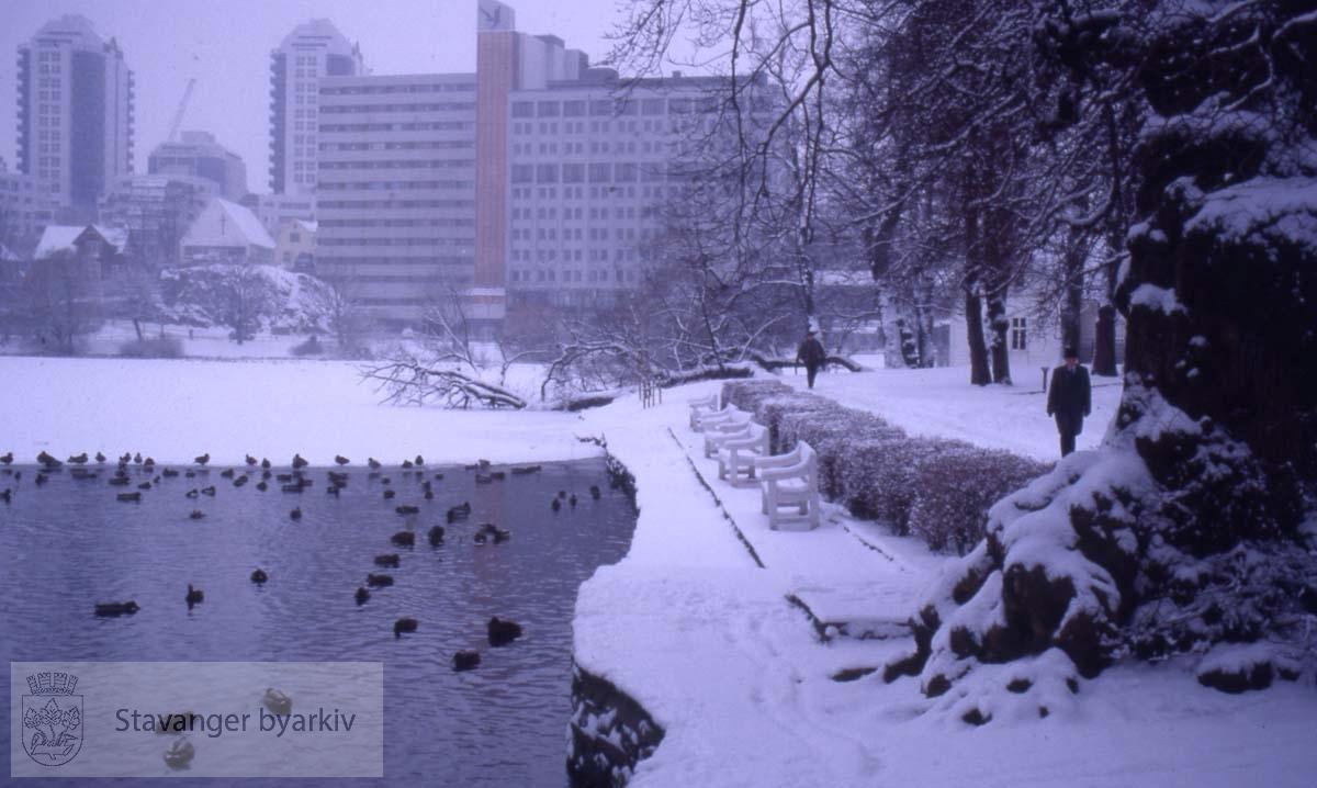 Byparken ved Breiavatnet