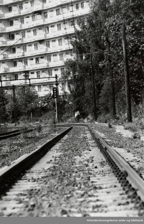 Gamlebyen. 25. mai 1994