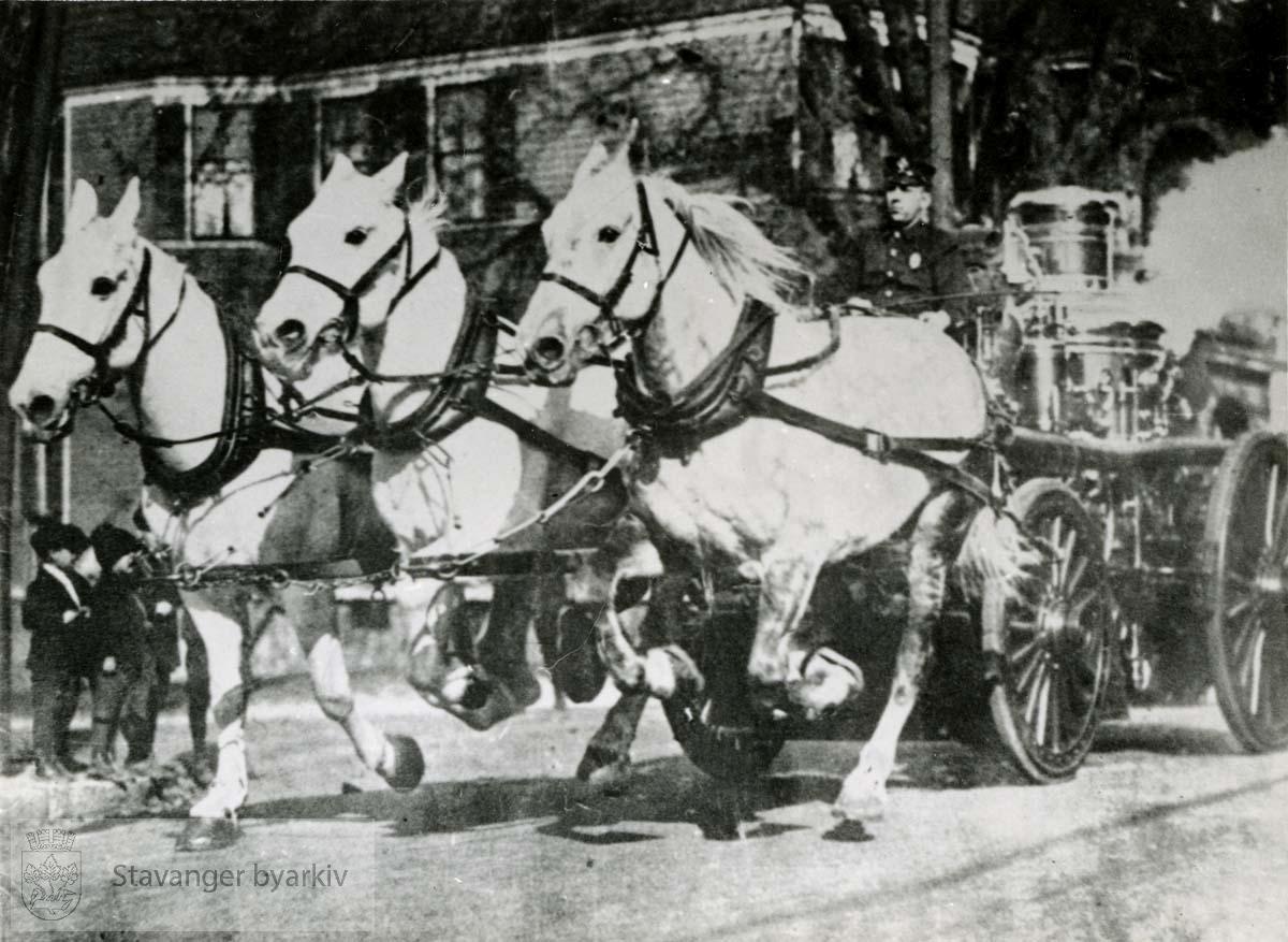 Brannslukkingssprøyte/ landdampsprøyten Sluk, blir trukket av tre hvite hester. Utrykningskjøretøy..Dampsprøyta Sluk hadde dampmaskin og var avhengig av kol. Kolet var på en egen kjerre som alltid fulgte med Sluk ut på utrykning. I tillegg var det ei kjerre der alle slangene var plassert.
