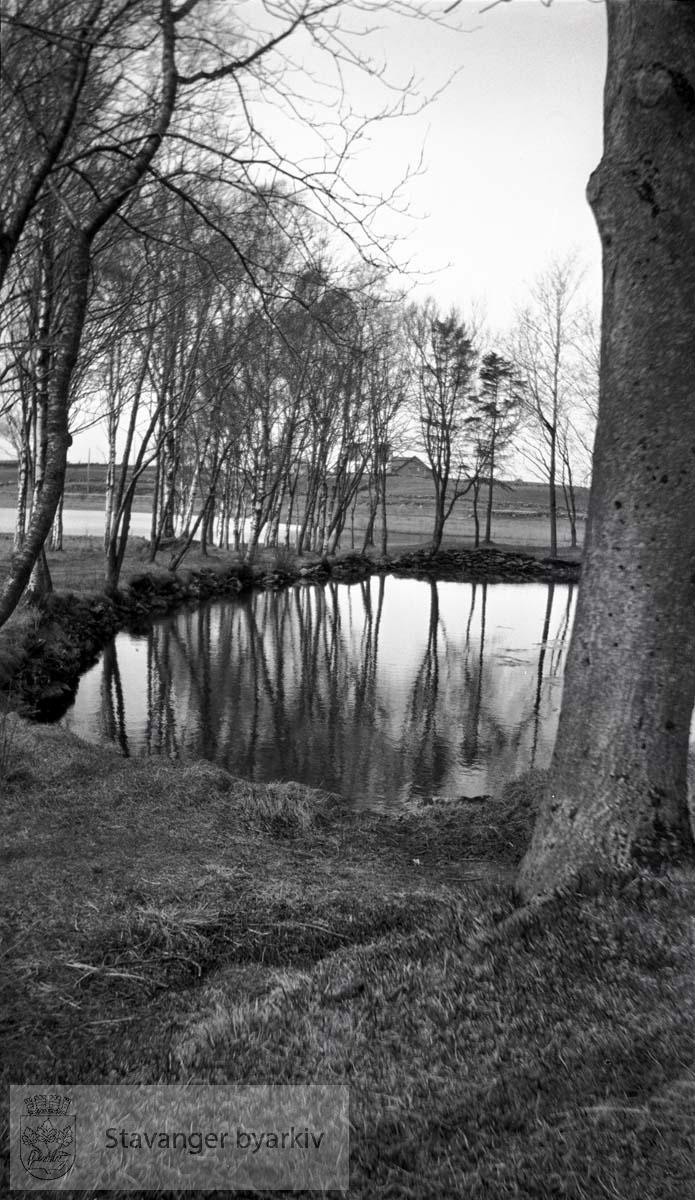 Det første offentlige vannverket for Stavanger tok vann fra Mosvatnet som lå 37 m.o.h. Det ble bygget i 1865-66 og tatt i bruk januar 1866. Mosvatnet var Stavangers drikkevannskilde fra 1865 til 1930.