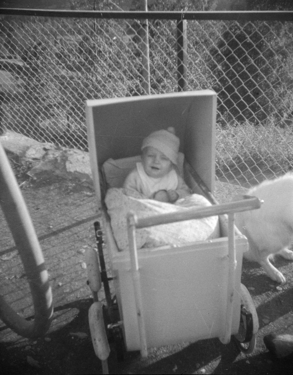 Barn i barnevogn