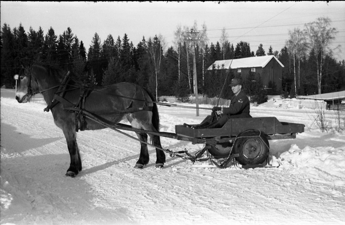 To bilder fra Hærens Hesteskole på Starum ca. årsskiftet 1957/1958. Bildene viser hest som trekker ei kjerre som er utstyrt med gummihjul, men hvor det er påmontert en slags ski for vinterbruk. Personen er ikke identifisert.