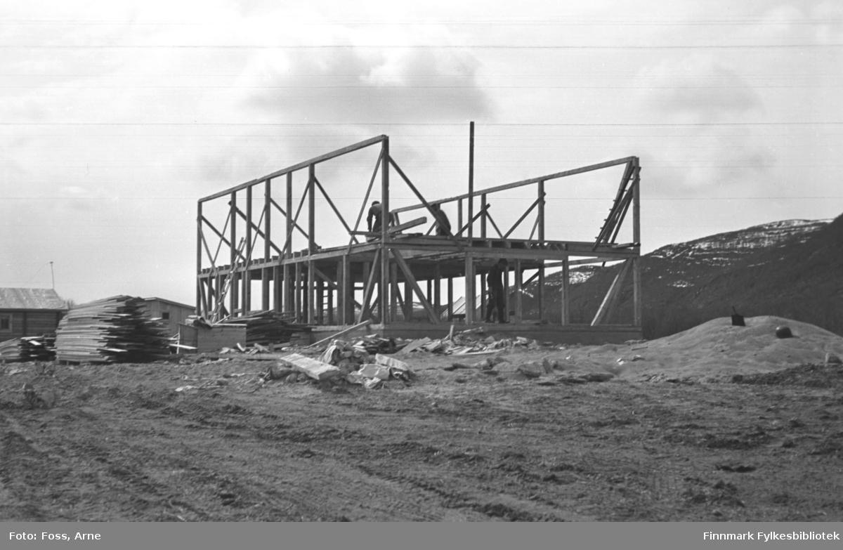 Et nytt fjøs eller en låve er under bygging, i Tana området i mai-juni 1947.