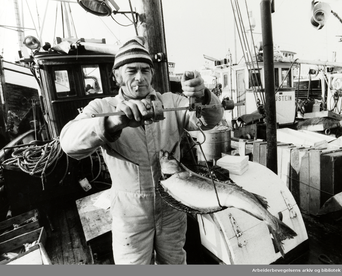 """Havna. Svein Johansen på """"Heilo"""", hører med til de faste fiskeselgerne langs Rådhuskaia. Mars 1983"""