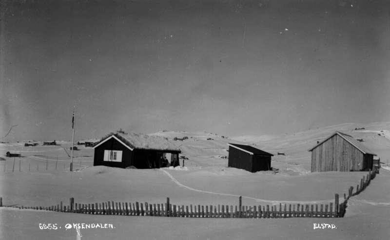 Ringebu. Øksendalen. Lita tømmerhytte og to uthus. Vinter