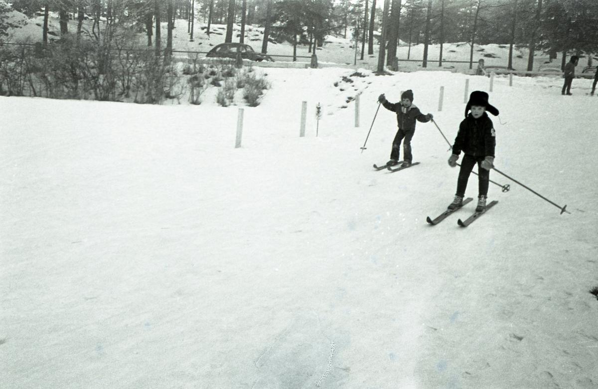 Avslutning på skidskolan för barn. Två barn på skidor i skogen.