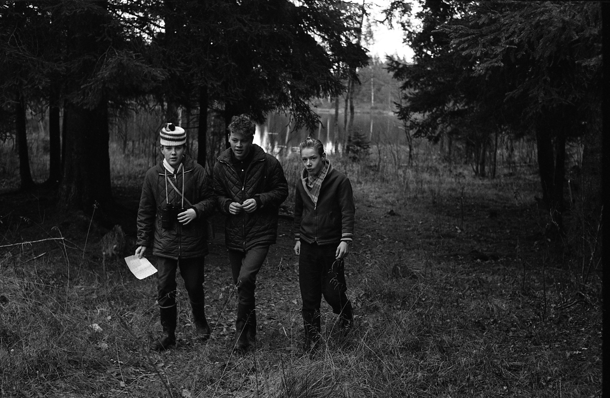Fältbiologer. Tre grabbar i terrängen. En av dem har en kamera hängande om halsen. Bakom dem ses en sjö.